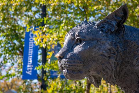 UNH Wildcat statue for decoration only