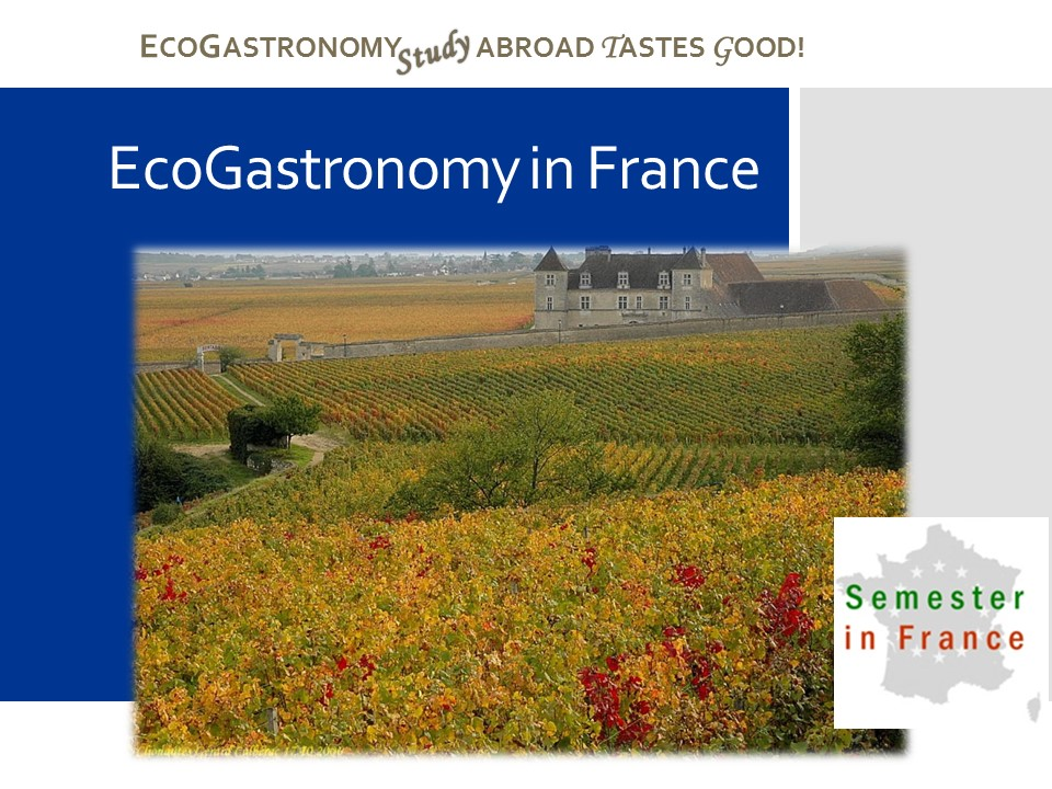 EcoGastronomy in France