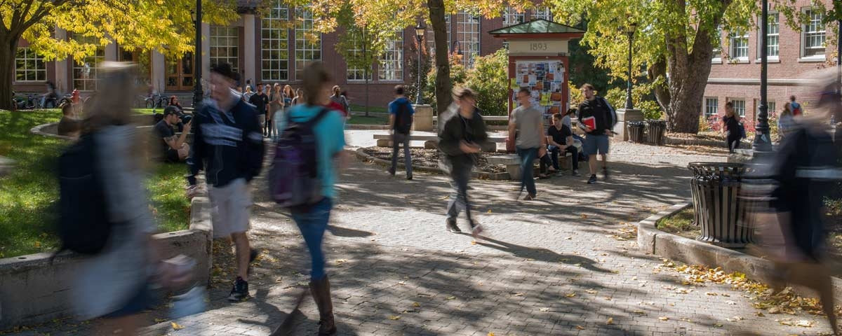 Students walking on campus in between classes