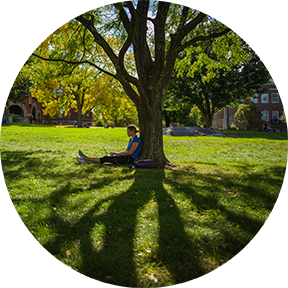 unh student sitting under tree on t-hall lawn