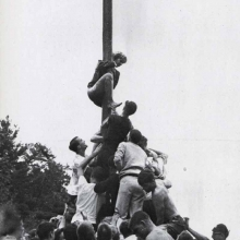 Old photo of crowd of students climbing up pole