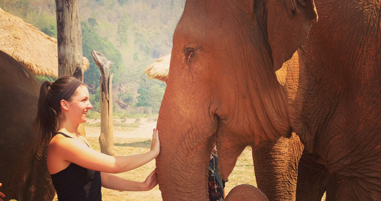 Megan Spellman '17 petting elephant at Elephant Nature Park in Thailand