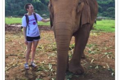 Margo Clark  petting an elephant in Thailand