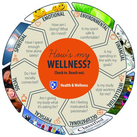 wellness wheel with questions