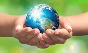 Image result for environment health image