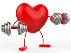 Physical Activity Photo, heart lifting weights
