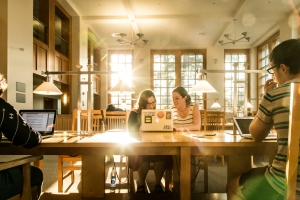 Students studying in the UNH library