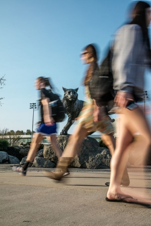 Physical Activity Rate Drops In Young Adults!