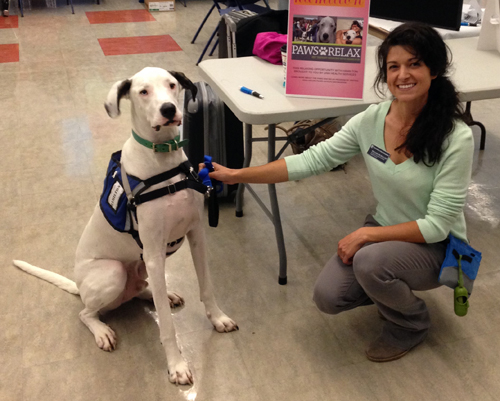 Pet_Therapy_Healthy_UNH_Blog_Photo