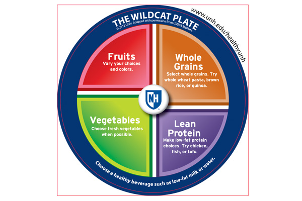 Wildcat Plate Graphic