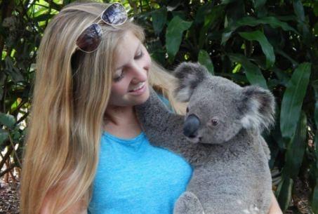 kinsella and koala