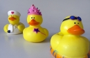 toy rubber ducks