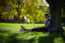 A photo of a Student sitting under a tree looking at a laptop in fall