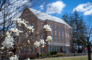 Dimond Library in Spring 2019
