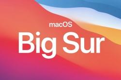 MacOS Big Sur logo