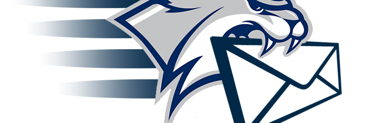 Wildcats Email Icon