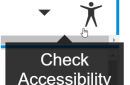Check Accessibility Icon