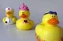toy rubber ducks