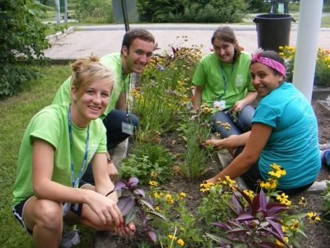 Students planting flower garden