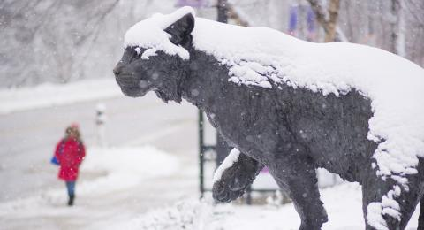 UNH Wildcat Statue in the winter