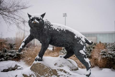 UNH Wildcat Sculpture in the snow