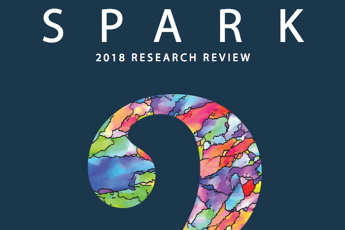 SPARK report cover