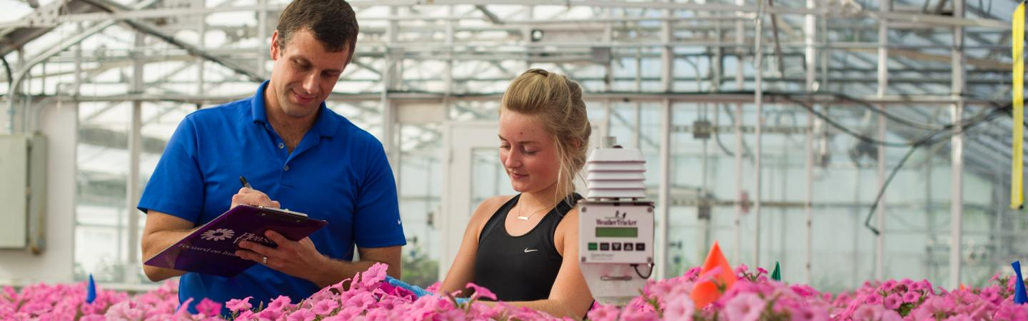 UNH researchers in greenhouse