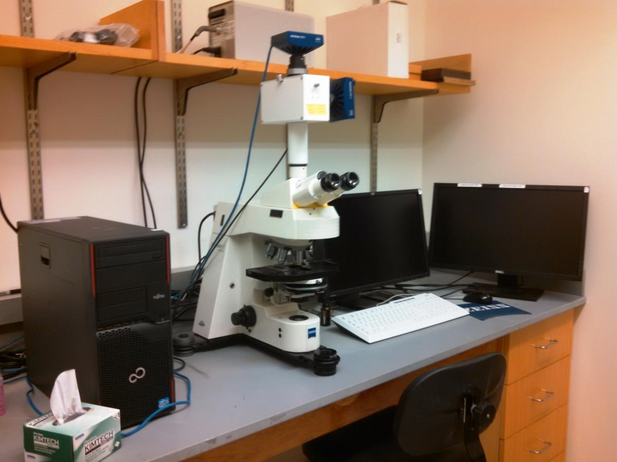 The Zeiss Axioplan 2 Imaging upright fluorescence/brightfield microscope.
