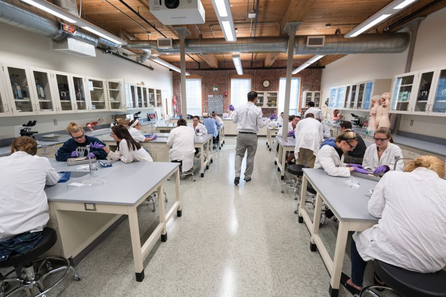 A photo of a chemistry class at UNH Manchester
