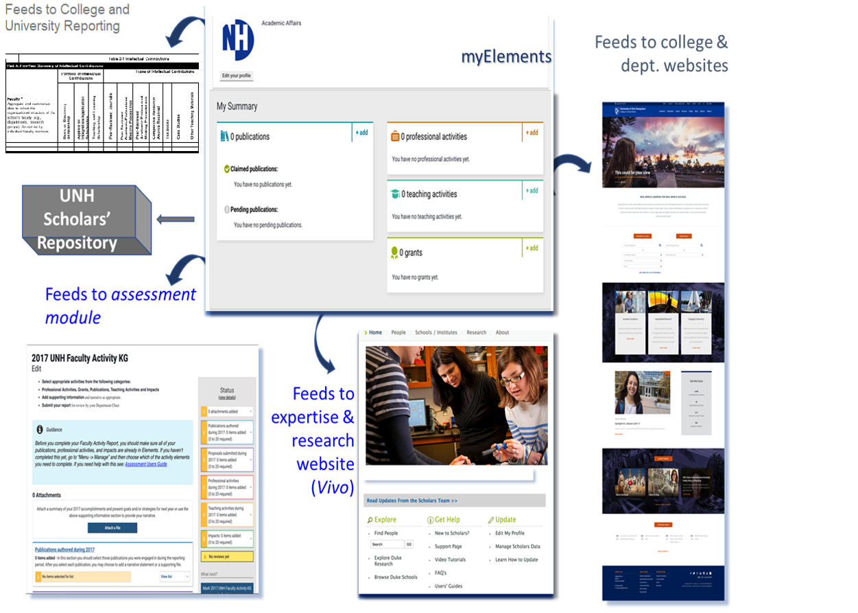 Myelements Flow Chart University Of New Hampshire
