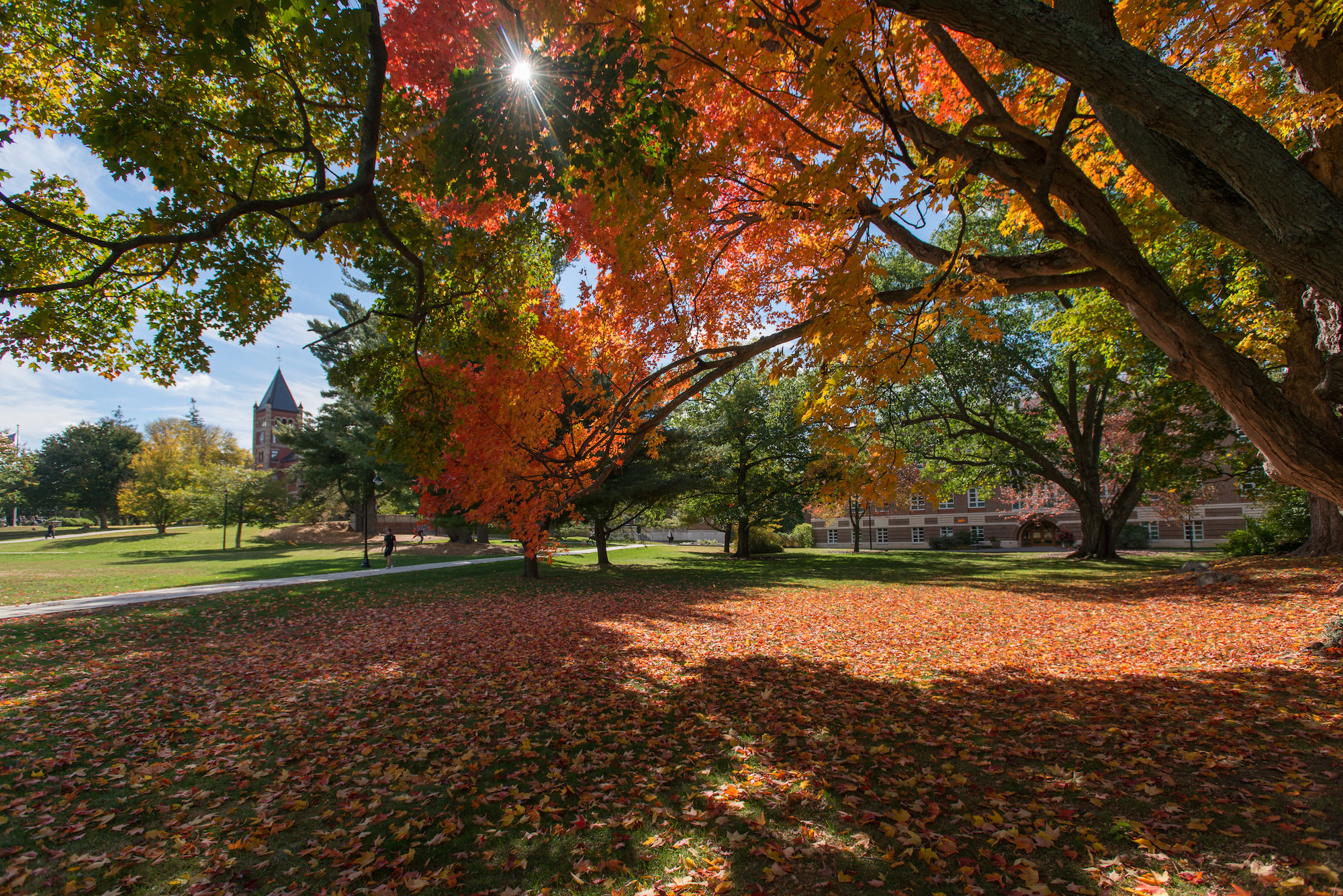 UNH Campus in fall season
