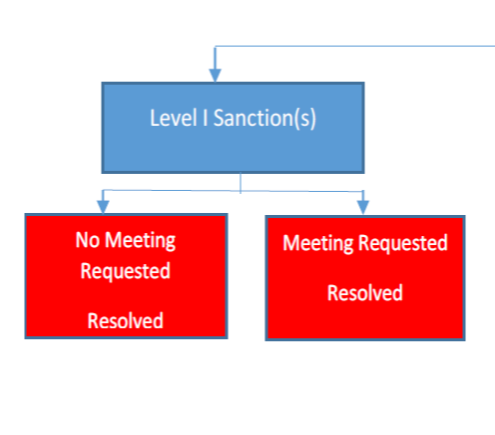 Level I due process flow chart
