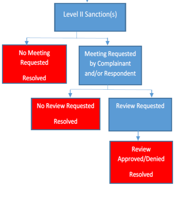 Level 2 due process flow chart
