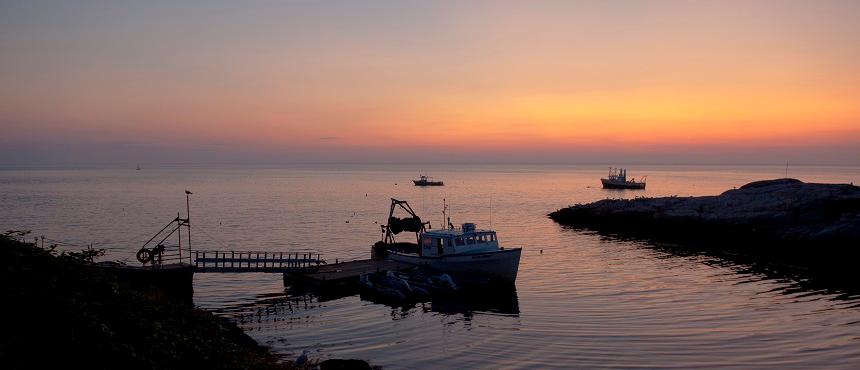 Image of Appledore Island