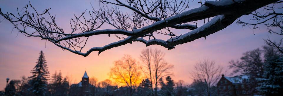 Image of branch with sunset and UNH in background