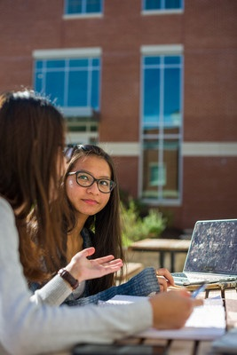 Students studying outside with laptop