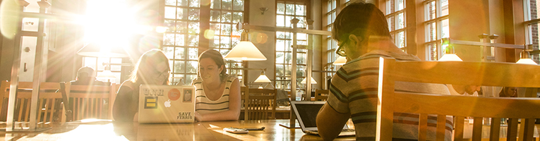 students studying in dimond library