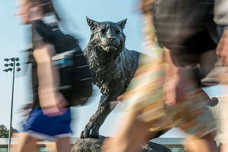 Students walking in front of wildcat statue