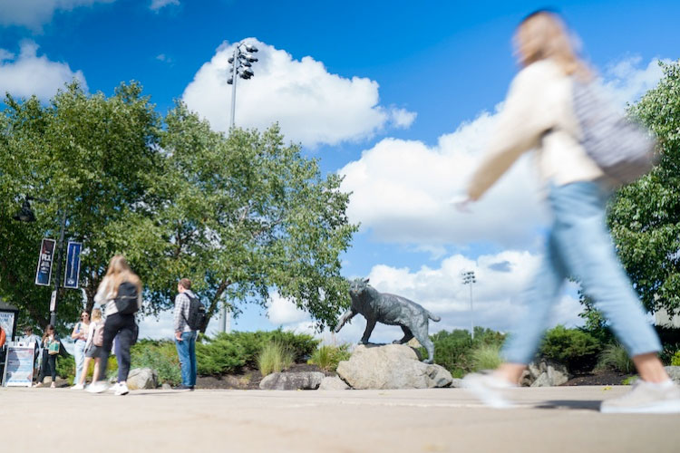 Students walking outside in front of Wildcat statue