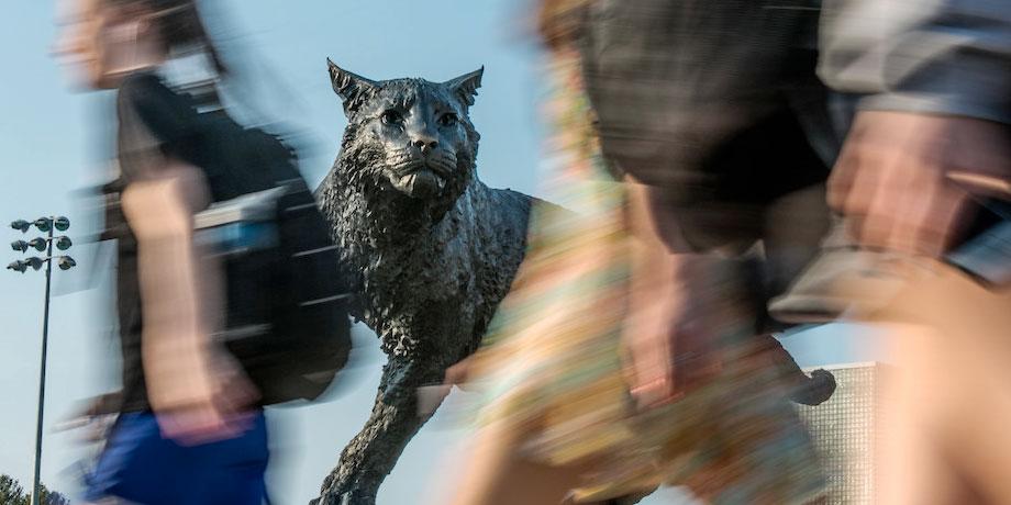 Students walking in front of wildcat sculpture