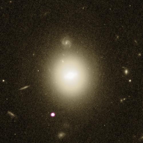 Xray telescope image of rare black hole