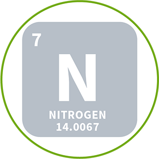 icon of nitrogen element