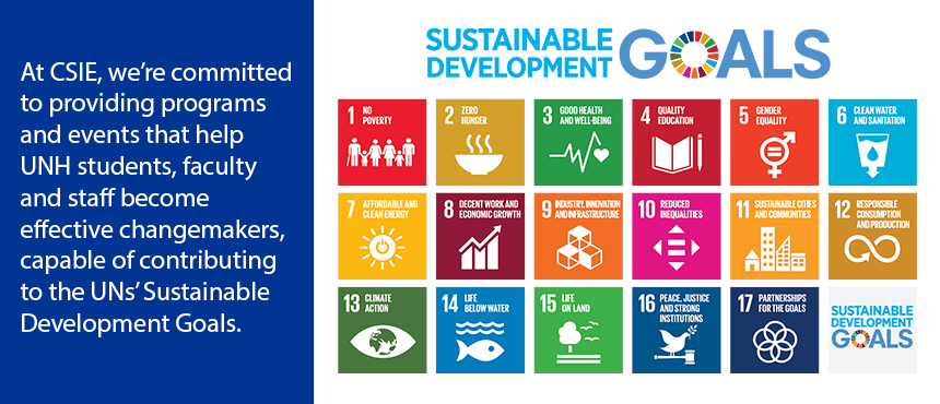 CSIE supports the UNs Sustainable Development Goals
