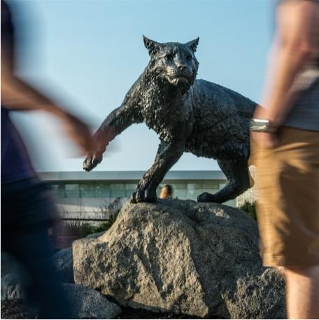 Wildcat statue on UNH Durham campus