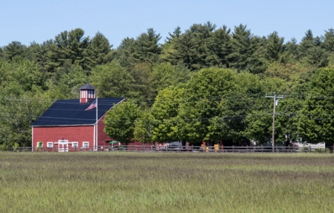 Medium-distance photo of Branch Hill Farm in Milton. A red barn is located on the left; there is a field of grass in the foreground and trees in the background.