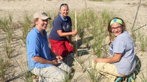 Pete Ferraro works alongside other volunteers tending to dunes in Hampton