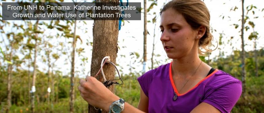 Katherine Sinacore