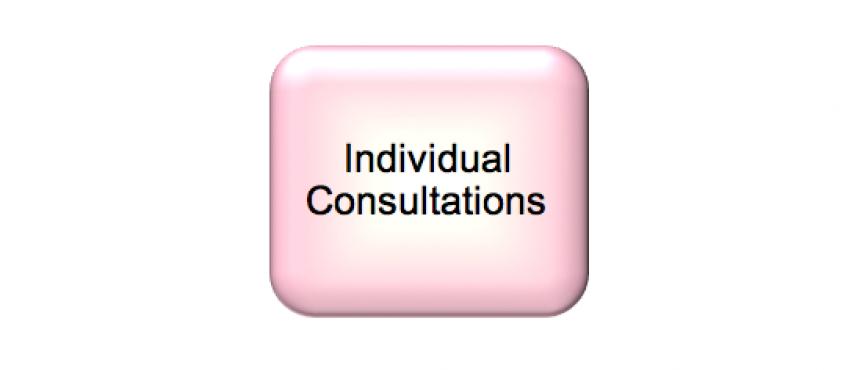 Individual Consultations