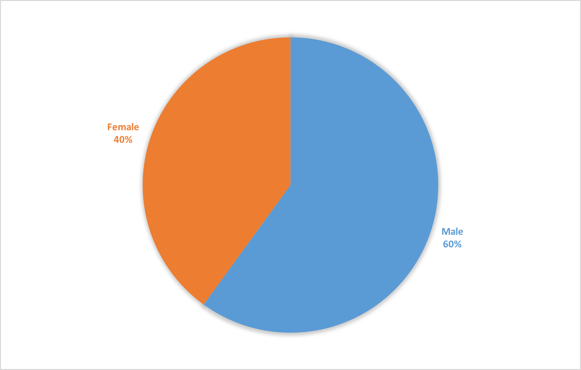blue and orange pie chart displaying the percentage of female and male students in the program