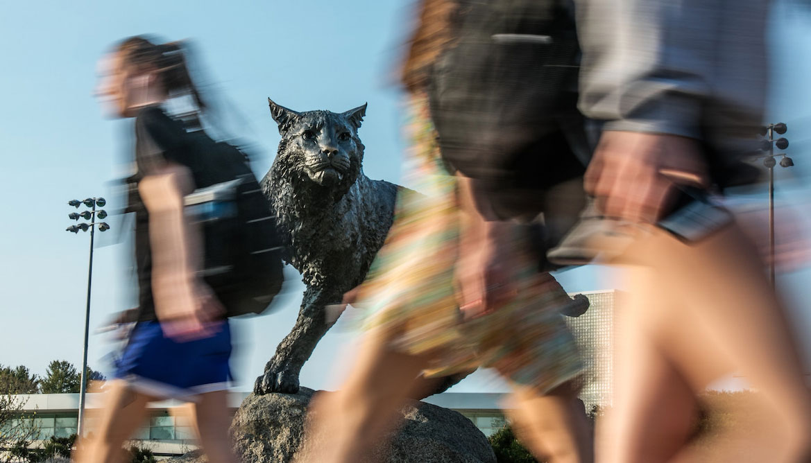 Students walking in front of the wildcat statue